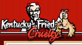 fast food lowels mouse traps hate kfc passion